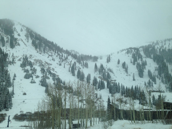 Alta Ski Area - 11/17/15  Good amount of snow on the ground in the canyon. Snowing lightly at the base but looks like it's snowing hard at upper elevations as there is little visibility up there. Snow is dry and dusty  - ©Summer