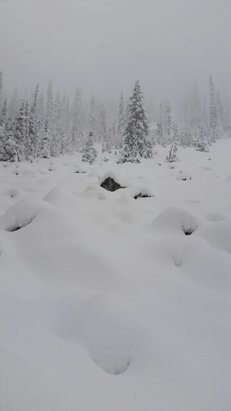 Alpental - Firsthand Ski Report - ©dcsutliffe