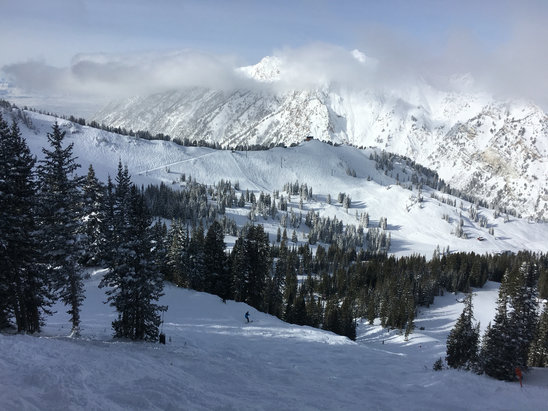Alta Ski Area - Great skiing today,14 inches overnight.   - ©Justin's iPhone