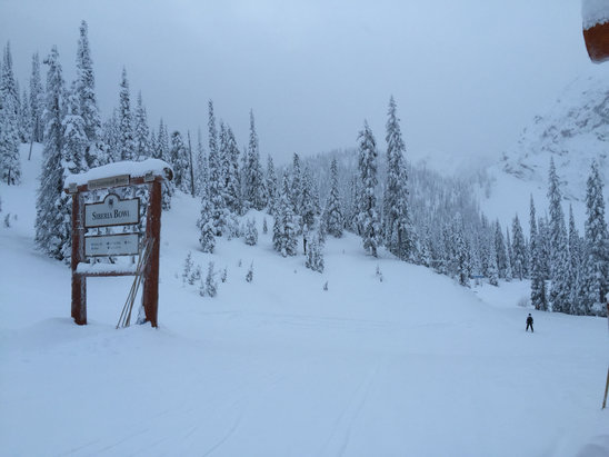 Fernie Alpine - Great morning at Fernie. Fresh snow and it is still coming down.    - ©Dylan's Phone