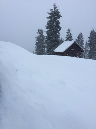 Homewood Mountain Resort - Amazing powder everywhere and nobody here to track it up. Man I love Homewood - ©Kris A Smith, MD's iPhon