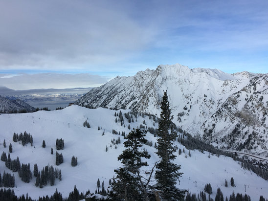 Alta Ski Area - This place (Alta, UT) is so amazing. 5 more fresh inches this morning.   - ©Justin's iPhone