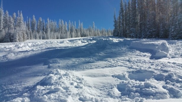 Sunrise Park Resort - Amazing Pow Pow, not even one bear sighting.  No wait at lifts on Apache/Cyclone - ©serenityplumbingaz