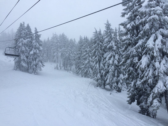Mt. Bachelor - What a great late afternoon storm patrol on wednesday, 6