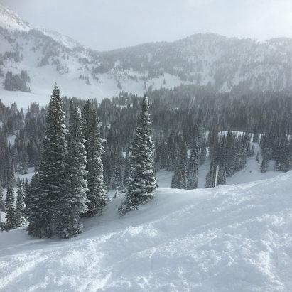 Alta Ski Area - 'Nuff said - ©Tim's iPhone