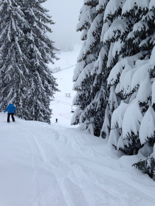 St-Cergue La Dôle - Awesome powder day today. Visibility limited at the top but cleared up part way down. Snow conditions were excellent! - ©Carl's iPhone
