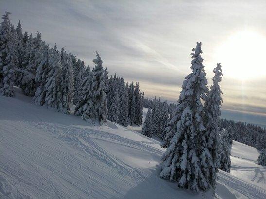Feldberg Wintersportzentrum - très bonne neige et d'excellentes condition météo...le TOP - ©m.houideg