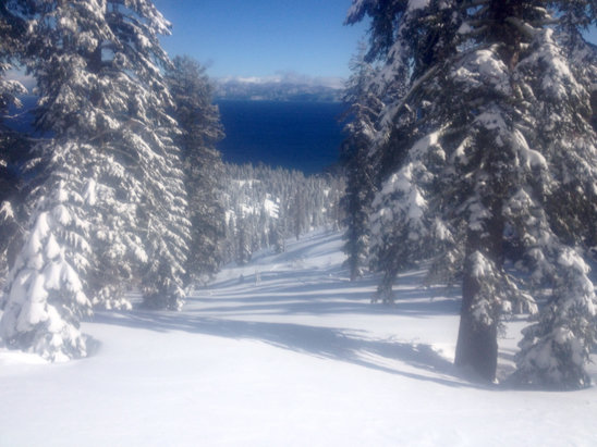 Homewood Mountain Resort - Amazing day! No lines. Untouched everywhere. Deep and perfect. - ©Michael Nobriga's iPhone