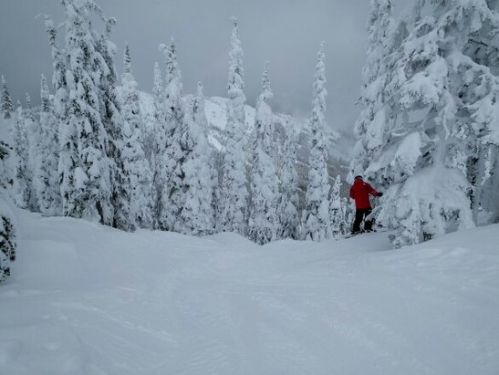 Red Resort - Firsthand Ski Report - ©anonymous user