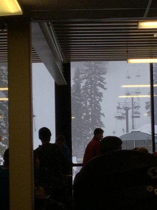 Mt. Hood Meadows - Snowing and windy  - ©jbcwa