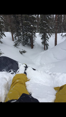 Wolf Creek Ski Area - Some powder in the trees still. - ©dvdcechin's iPhone (2)