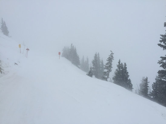 Snowbird - Off the tram at 11k. Still light snow. Pretty good powder coming off a sunny day yesterday.  - ©sduncan's iPhone