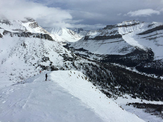 Lake Louise - Great snow go be had in back bowls. Still spots with untouched snow. Beautiful day that turned snowy. So tomorrow may be quite good. - ©Calgarian