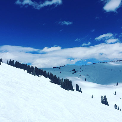 Vail - Gorgeous day on the slopes!  - ©Jeanne Dillon's iPhone