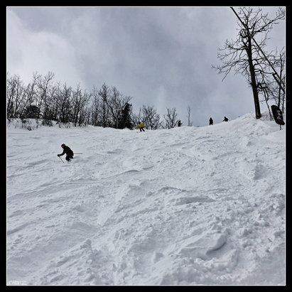 Blue Mountain - Cwood #powpowpow - ©SilverFox's iPhone 6+