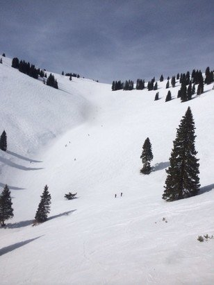 Vail - Skied the front in am on the groomers, put on the fatties for the bowls Pm ... As they say