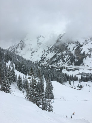 Alta Ski Area - Graupel and high winds all day. Still phenomenal though! wind loading made some spots deep. Supreme was protected. Tomorrow should be fantastic.  - ©RF