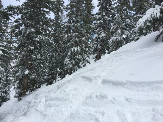 Heavenly Mountain Resort - Mott Canyon 14