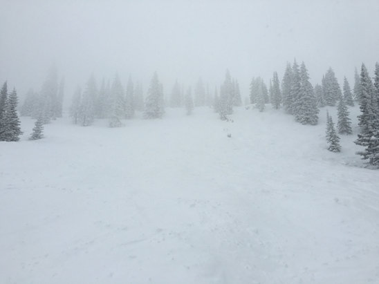Steamboat - Snowing all day.  Upper mountain was fabulous, although with poor visibility.  Lower slopes pretty icy despite the recent snowfall. - ©Eric's iPhone