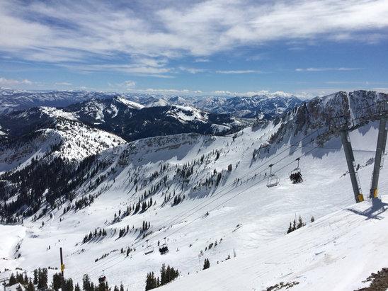 Snowbird - EPIC powder day all mountain, upper bowls especially.  - ©Jenna's iPhone