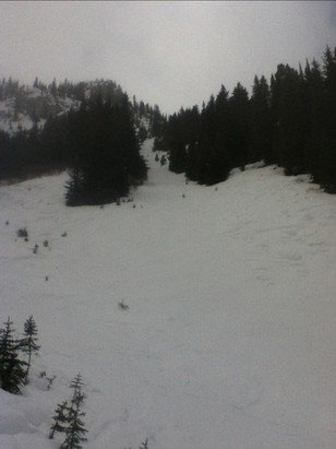 Mt. Norquay - march 9th, most of the hill was skied off with a light dusting of snow. groomers were alright but got a little slushy in the afternoon. Best snow was found on fm2, gun run and boundary bowl area. (picture below fm2) - ©Anonymous