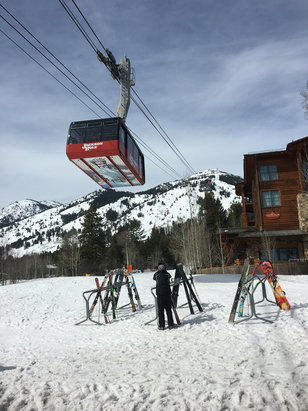 Jackson Hole - Spring skiing. Good snow up top, slushy bottom half of mountain - ©Kendall Bryce