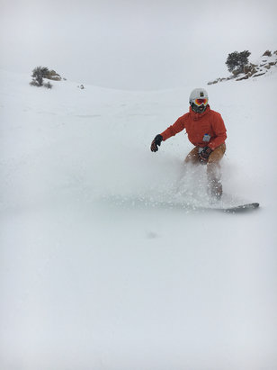 Powder Mountain - So frickin' good today! - ©Aye Aye Phone