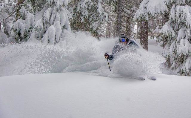 Floating in four feet of powder in a major March storm at Mt. Hood Meadows - ©Dave Tragethon / Mt. Hood Meadows