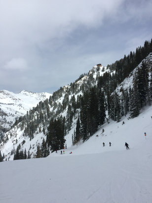 Snowbird - packed powder, mineral basin was sunny all morning, awesome day - ©Jimmy Lin's iPhone