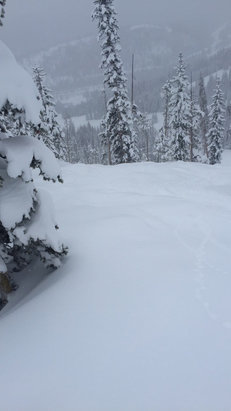 Winter Park Resort - Knee deep untracked freshies. Amazing day - ©kelli's iPhone