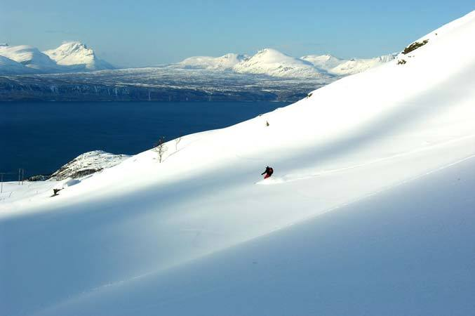 Narvik - photo: Jeff Webb