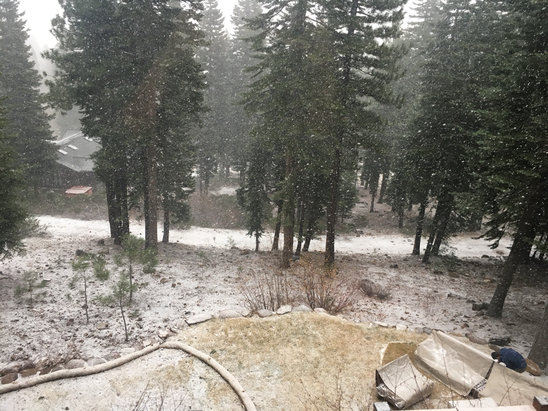 Northstar California - Hope it sticks...  - ©Heather Petersen's iPhon