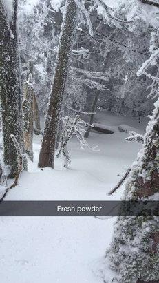 Killington Resort - Fresh powder at the Beast today  - ©Vincent's iPhone
