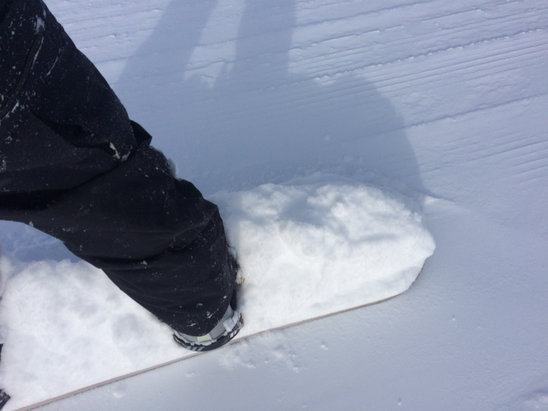 Cooper - 16 inches of powder last night.   Board kept disappearing in the depths.  Fun day.   - ©iPhone