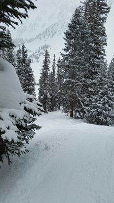 Arapahoe Basin Ski Area - secret powder stash - ©ddjudd23