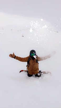 Lake Louise - Powder in the am was GREAT fresh tracks if you know where to look! - ©truth