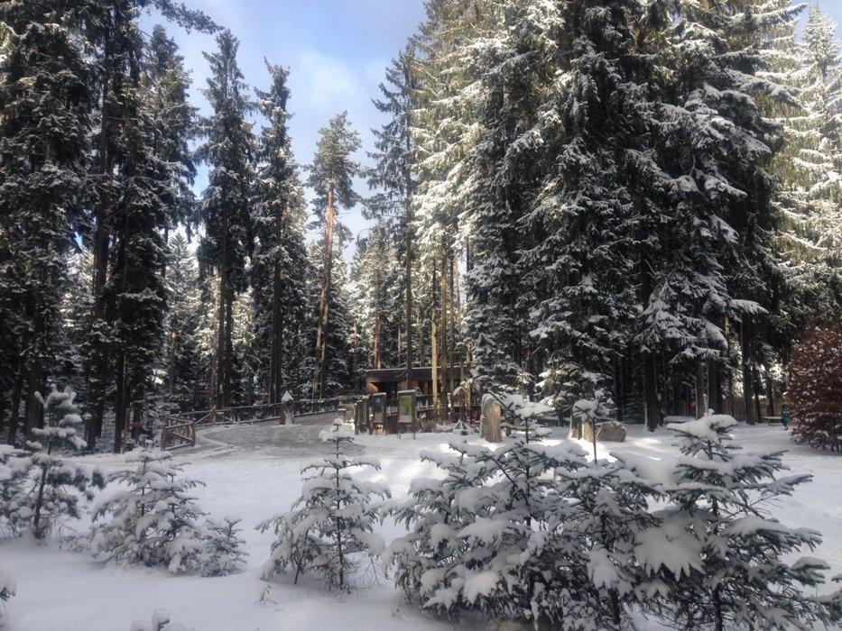 Skiareál Lipno - ©Skiareál Lipno
