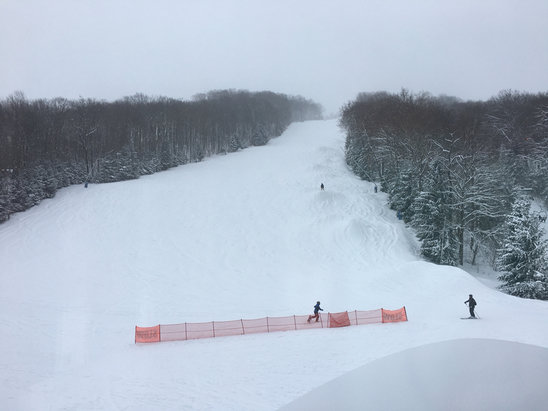 Holiday Valley - Sunday morning was an insane powder day. Received over 10 inches. If they groomed last night today will also be great.  - ©jims