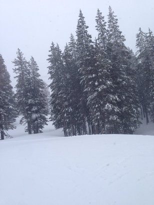 Mammoth Mountain Ski Area - Snow falling all day. High winds. 1/2 of the mountain is closed, good powder to be found everywhere. Deep in the trees.  - ©Stephen Volmer's iPod