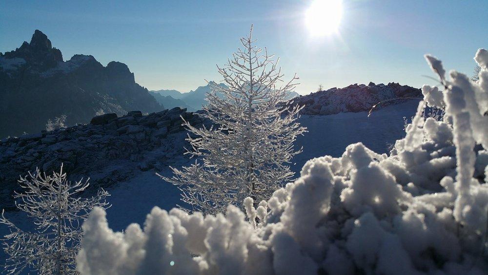 San Martino di Castrozza 11.01.17 - ©Scuola Sci Dolomiti San Martino di Castrozza Facebook