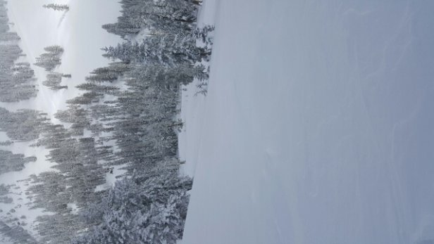 Squaw Valley - Alpine Meadows - awesome day at alpine meadow 1/13 - ©anonymous