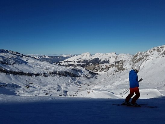 Avoriaz - great day....slopes in great condition. not too many bumps made by stupid skiers !! - ©Peet the boarder
