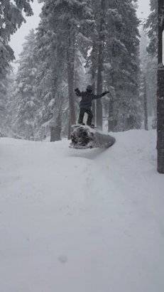 Ski Santa Fe - Speak 50 50 on fallen log - ©Spidemental