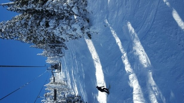 Arizona Snowbowl - Awesome day yesterday, great snow and short lines.. Snowbowl Rd was mostly cleared up  - ©anonymous