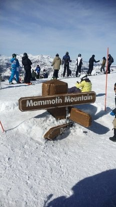 Mammoth Mountain Ski Area - Soooo much snow! Rode Sunday and Monday. Nobody there on Monday. Snow was great, sun softened it up early. - ©antonio751984