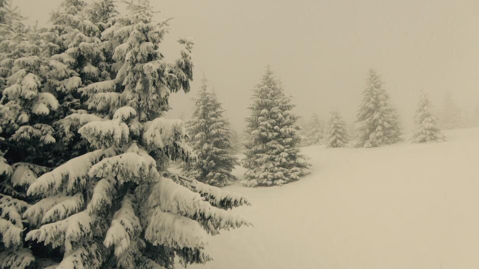 PARK SNOW Donovaly 2.2.2017 - ©facebook PARK SNOW Donovaly