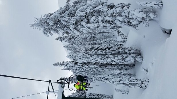 Kirkwood - sunny day and nice powder. love it - ©anonymous