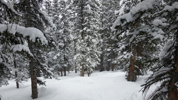 Winter Park Resort - $now!! - ©jomama