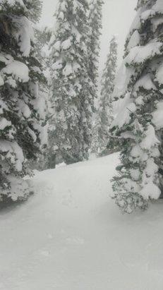 Fernie Alpine - powder.... powder everywhere.... bring your snorkel  - ©nodnarb