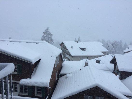 Adelboden - 20-30cm Neuschnee heute Morgen - ©slinde